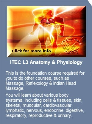 Soothing Touch Academy | ITEC Courses